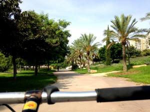 Mit dem Fahrrad durch den Park Túria in Valencia an einem langen Wochenende